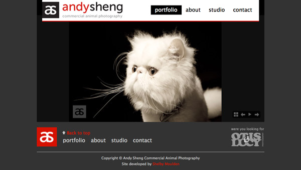 Home page of Andy Sheng website